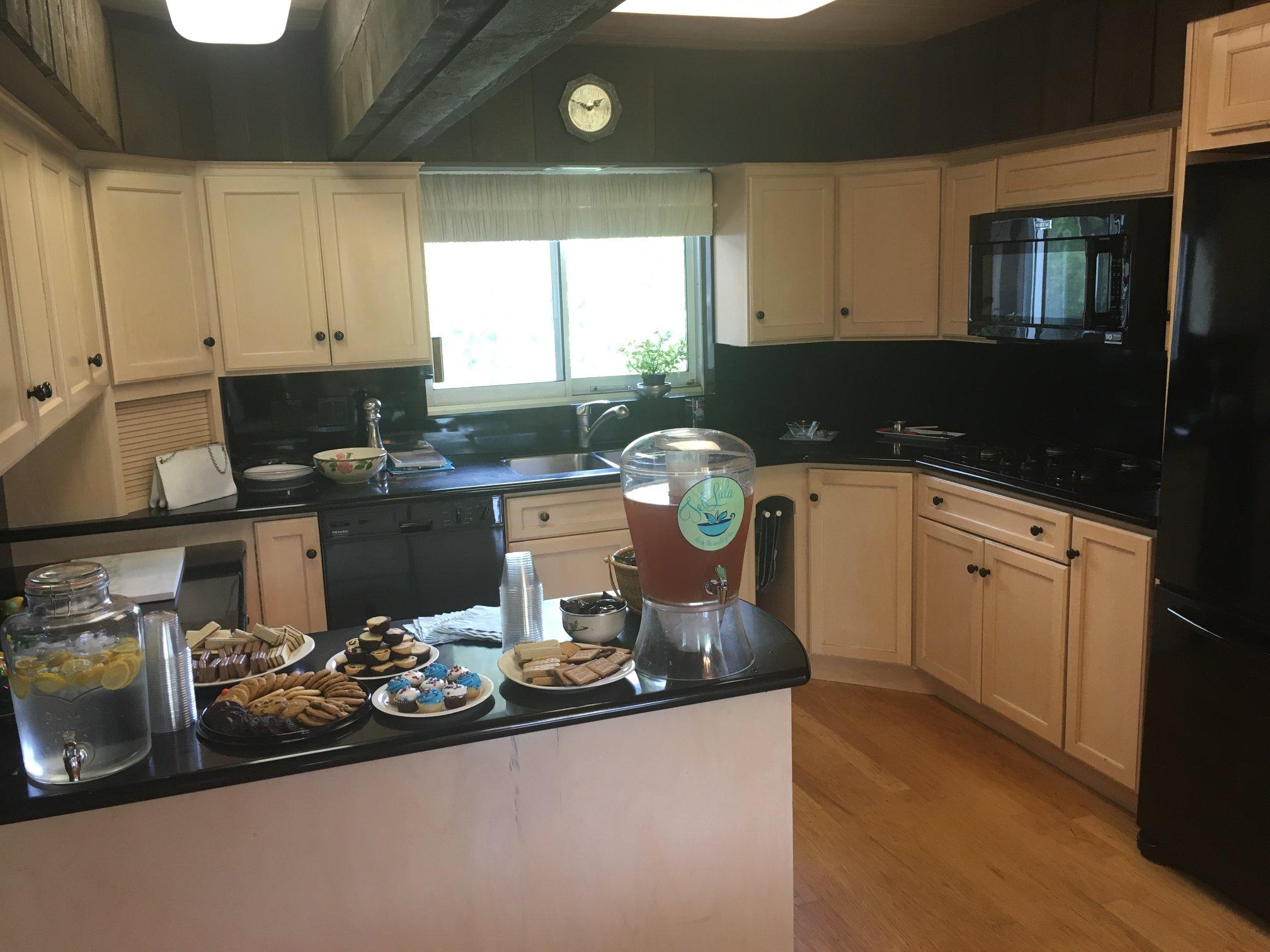 Sunday July 1, 2018 - Don Erickson's Seidel House in Park Ridge
